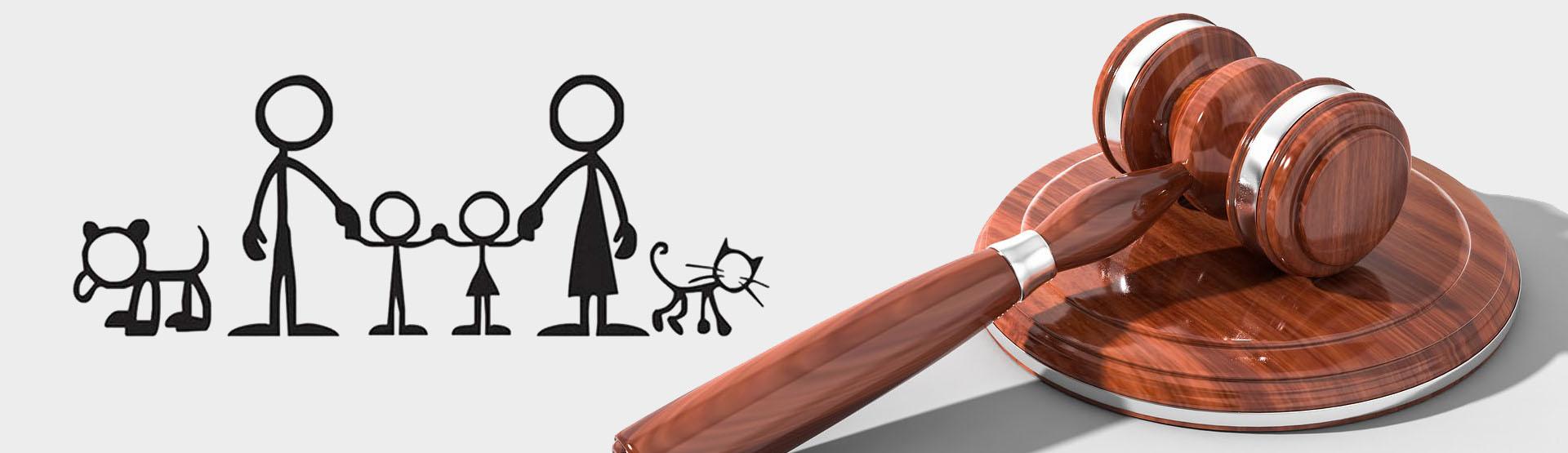 Subcategoría Derecho de familia